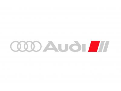 Audi Rims S Line decals 6pcs set
