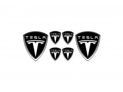 Tesla black domed emblems